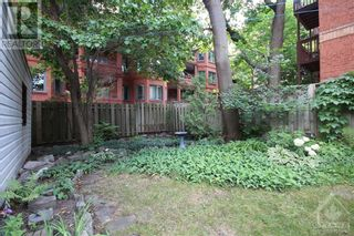 Photo 23: 70 PARK AVENUE in Ottawa: House for rent : MLS®# 1256103
