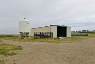 Photo 5: : Rural Mountain View County Agri-Business for sale : MLS®# C4135558