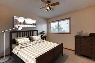 Photo 22: 924 Mckinnon Drive NE in Calgary: Mayland Heights Semi Detached for sale : MLS®# A1122625