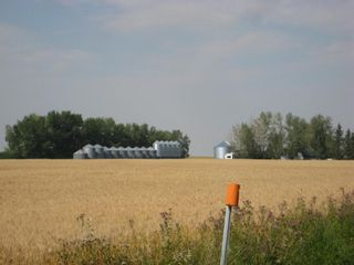 Photo 13: SE 20 30 1 W5 Highway 2A: Carstairs Residential Land for sale : MLS®# A1067588