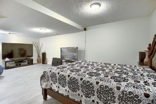 Photo 19: 348 TEMPLETON Circle NE in Calgary: Temple Detached for sale : MLS®# A1090566