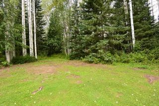 "Photo 24: 6793 KROEKER Road in Smithers: Smithers - Rural Manufactured Home for sale in ""Glacier View Estates"" (Smithers And Area (Zone 54))  : MLS®# R2495709"