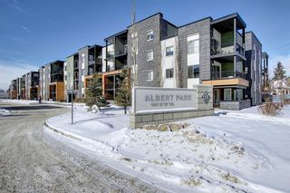 Photo 32: 1214 1317 27 Street SE in Calgary: Albert Park/Radisson Heights Apartment for sale : MLS®# A1070398
