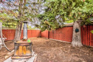 Photo 49: 82 Thornlee Crescent NW in Calgary: Thorncliffe Detached for sale : MLS®# A1146440