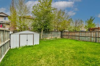 Photo 49: 303 Chapalina Terrace SE in Calgary: Chaparral Detached for sale : MLS®# A1113297