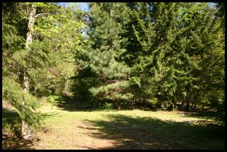 Photo 7: 21 6500 Southwest 15 Avenue in Salmon Arm: Panorama Ranch Vacant Land for sale : MLS®# 10230290
