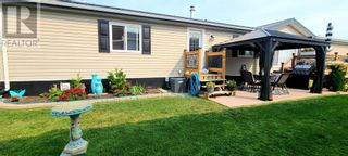 Photo 24: 9 Meadowplace Green in Brooks: House for sale : MLS®# A1145221