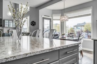 Photo 23: 437 Rainbow Falls Way: Chestermere Detached for sale : MLS®# A1144560