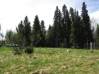 Photo 15: 127, 5241 TWP Rd 325A: Rural Mountain View County Land for sale : MLS®# C4299936