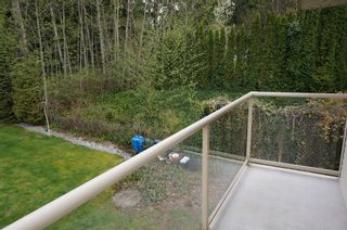 Photo 30: 26177 126th St. in Maple Ridge: Whispering Hills House for sale : MLS®# V1113864