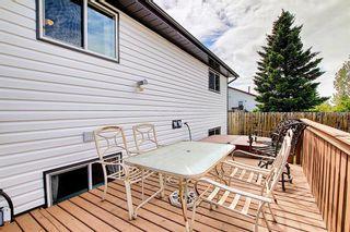 Photo 27: 159 Falton Way NE in Calgary: Falconridge Detached for sale : MLS®# A1113632