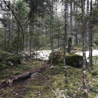Photo 2: Lot 14 Tupper Lake in Westfield: Vacant Land for sale : MLS®# 202110832