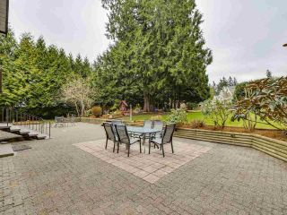 Photo 23: 3310 144 Street in Surrey: Elgin Chantrell House for sale (South Surrey White Rock)  : MLS®# R2558914