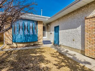 Photo 39: 64 Sanderling Hill in Calgary: Sandstone Valley Detached for sale : MLS®# A1090715