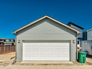 Photo 44: 417 Chinook Gate Square SW: Airdrie Detached for sale : MLS®# A1096458