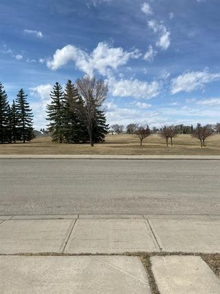 Photo 37: 351 Applewood Drive SE in Calgary: Applewood Park Detached for sale : MLS®# A1094539