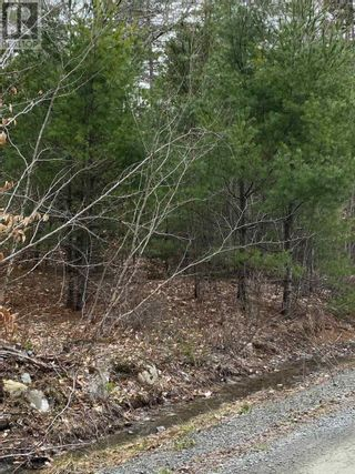 Photo 2: Lot Sunhaven Drive in Labelle: Vacant Land for sale : MLS®# 202108694