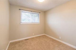 Photo 15: 6444 54 Street NE in Calgary: Castleridge House for sale : MLS®# C4144406