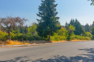 Photo 8: Proposed Lot Susan Marie Pl in : Co Wishart North Land for sale (Colwood)  : MLS®# 883403