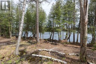 Photo 15: 3497 BRUNEL Road in Lake Of Bays: Vacant Land for sale : MLS®# 40161975