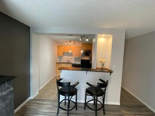 Photo 3: 404 823 19 Avenue SW in Calgary: Lower Mount Royal Apartment for sale : MLS®# A1129212