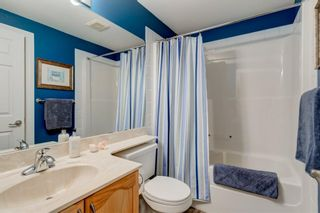 Photo 37: 41 Discovery Ridge Manor SW in Calgary: Discovery Ridge Detached for sale : MLS®# A1141617