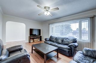 Photo 39: 3007 36 Street SW in Calgary: Killarney/Glengarry Detached for sale : MLS®# A1149415