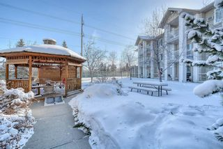 Photo 32: 3117 6818 Pinecliff Grove NE in Calgary: Pineridge Apartment for sale : MLS®# A1069420