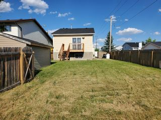 Photo 43: 23 Erin Meadows Court SE in Calgary: Erin Woods Detached for sale : MLS®# A1124454