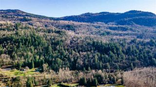 Photo 6: LT.2 TOLMIE ROAD in Abbotsford: Sumas Prairie Land for sale : MLS®# R2540016