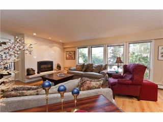 Photo 9: 6061 OLYMPIC Street in Vancouver: Southlands House for sale (Vancouver West)