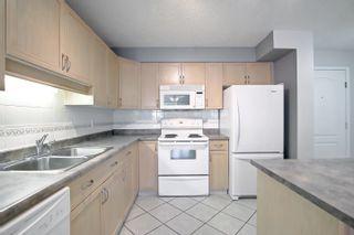 Photo 17: 104 8909 100 Street in Edmonton: Zone 15 Condo for sale : MLS®# E4262789