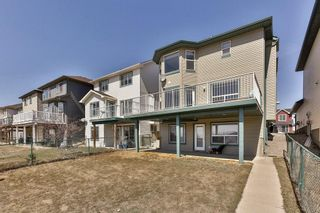 Photo 30: 49 SADDLECREST Place NE in Calgary: Saddle Ridge House for sale : MLS®# C4179394