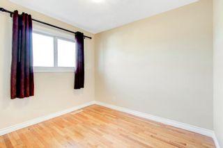 Photo 12:  in Edmonton: Zone 22 House for sale : MLS®# E4260068