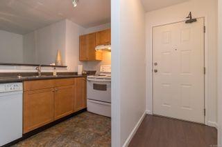 Photo 2: 207 2529 Wark St in : Vi Hillside Condo for sale (Victoria)  : MLS®# 885580