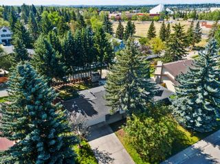 Photo 44: 439 WILDERNESS Drive SE in Calgary: Willow Park Detached for sale : MLS®# A1026738