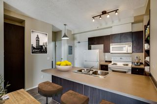 Photo 9: 3309 73 Erin Woods Court SE in Calgary: Erin Woods Apartment for sale : MLS®# A1150602