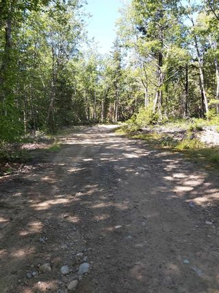 Photo 12: 1380 Canada Hill Road in Canada Hill: 407-Shelburne County Residential for sale (South Shore)  : MLS®# 202112231