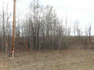 Photo 5: 81 15065 TWP RD 470: Rural Wetaskiwin County Rural Land/Vacant Lot for sale : MLS®# E4240270