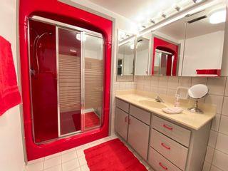 Photo 42: 11024 165 Avenue in Edmonton: Zone 27 House for sale : MLS®# E4252752