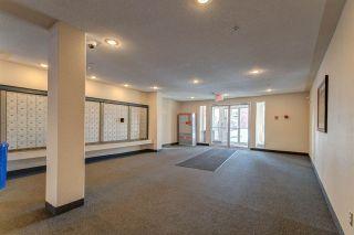 Photo 25: 324 11325 83 Street in Edmonton: Zone 05 Condo for sale : MLS®# E4229169