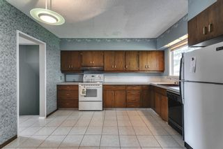 Photo 13: 15 42 Street SW in Calgary: Wildwood Detached for sale : MLS®# A1122775