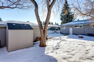 Photo 41: 4816 30 Avenue SW in Calgary: Glenbrook Detached for sale : MLS®# A1072909