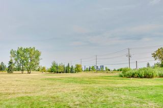 Photo 20: 4719 15 Street SW in Calgary: Altadore Detached for sale : MLS®# A1026652