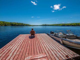 Photo 32: 1282 Woa Anstruther Lake View in North Kawartha: Rural North Kawartha House (Bungalow) for sale : MLS®# X5255516