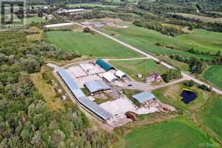 Photo 21: 550 Cookville Road in Out of Board: Agriculture for sale : MLS®# NB050249