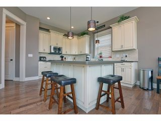 Photo 19: 2008 MERLOT Blvd in Abbotsford: Home for sale : MLS®# F1421188