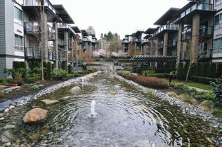 "Photo 9: 502 7478 BYRNEPARK Walk in Burnaby: South Slope Condo for sale in ""GREEN"" (Burnaby South)  : MLS®# R2021457"
