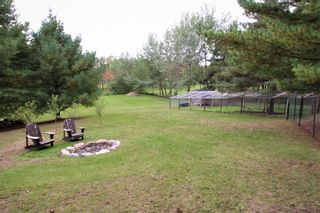 Photo 45: 262 Clitheroe Road in Grafton: House for sale : MLS®# X5398824