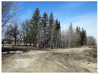 Photo 1: 4100 St Mary's Road in Winnipeg: South St Vital Residential for sale (South East Winnipeg)  : MLS®# 1607005